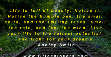 life is beauty