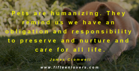 pet lovers quotes